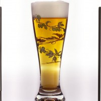 Original 4x5 transparency of beer glass with hops motif.